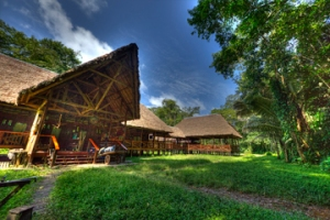 tambopata-research-center
